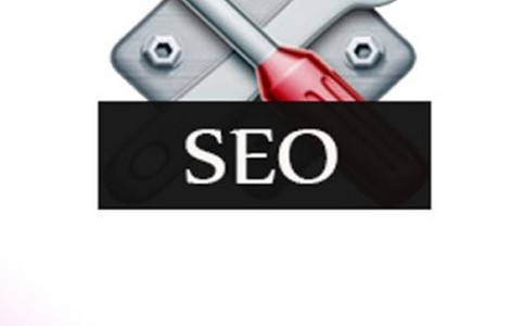 「电商网站seo」做seo怎么快速挣钱?专家告诉你